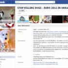 Сторінка про спасіння українських тварин зібрала 80 тис. лайків
