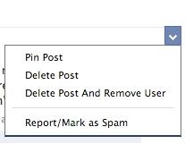 Facebook тестує «прикріплені» публікації для груп