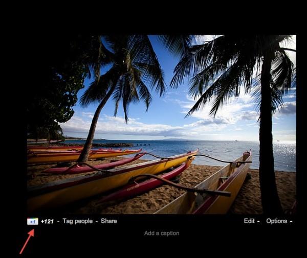 Дайджест: Google дозволив плюсувати фотографії, доходи LinkedIn