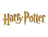 Google продаватиме Гаррі Поттера через свій інтернет магазин