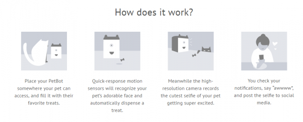 Petcube придбав свого конкурента   канадський стартап PetBot