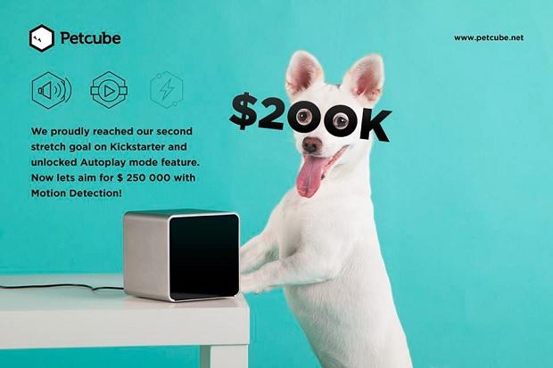 Petcube зібрав $200 тис на Кікстартері і встановив рекорд для українських стартапів