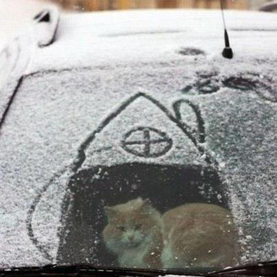 Українці активно жартують з пятничної погоди (фотожаби. постійно оновлюється)