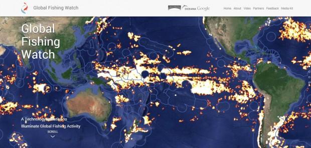 Google допоможе ловити рибалок браконьєрів