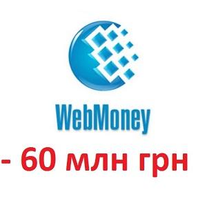 Податкова заблокувала 60 млн грн на рахунках WebMoney